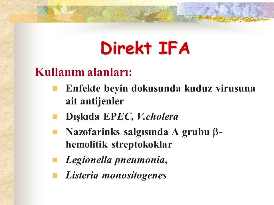 Direkt IFA Direkt IFA Kullanım alanları: Enfekte beyin dokusunda kuduz virusuna ait antijenler Dışkıda EPEC, V.cholera Nazofarinks salgısında A grubu  - hemolitik streptokoklar Legionella pneumonia, Listeria monositogenes