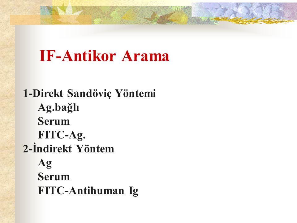 IF-Antikor Arama 1-Direkt Sandöviç Yöntemi Ag.bağlı Serum FITC-Ag. 2-İndirekt Yöntem Ag Serum FITC-Antihuman Ig