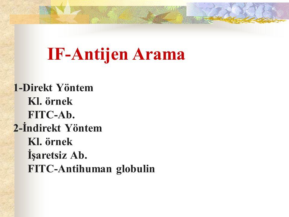 IF-Antijen Arama 1-Direkt Yöntem Kl. örnek FITC-Ab. 2-İndirekt Yöntem Kl. örnek İşaretsiz Ab. FITC-Antihuman globulin
