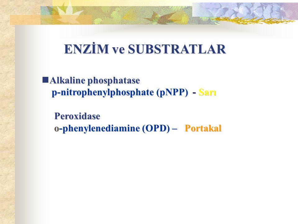 Alkaline phosphatase p-nitrophenylphosphate (pNPP) - Sarı p-nitrophenylphosphate (pNPP) - Sarı Peroxidase Peroxidase o-phenylenediamine (OPD) – Portakal o-phenylenediamine (OPD) – Portakal ENZİM ve SUBSTRATLAR ENZİM ve SUBSTRATLAR