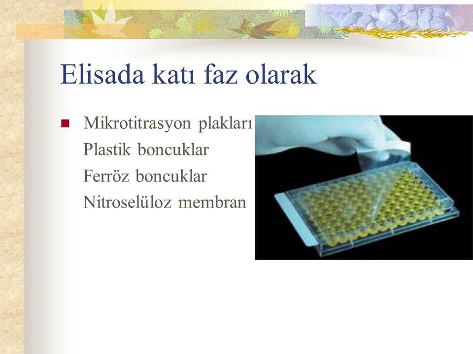 Elisada katı faz olarak Mikrotitrasyon plakları Plastik boncuklar Ferröz boncuklar Nitroselüloz membran