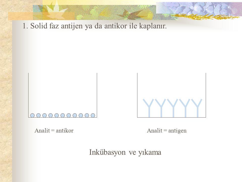 Analit = antikor Analit = antigen Inkübasyon ve yıkama 1. Solid faz antijen ya da antikor ile kaplanır.
