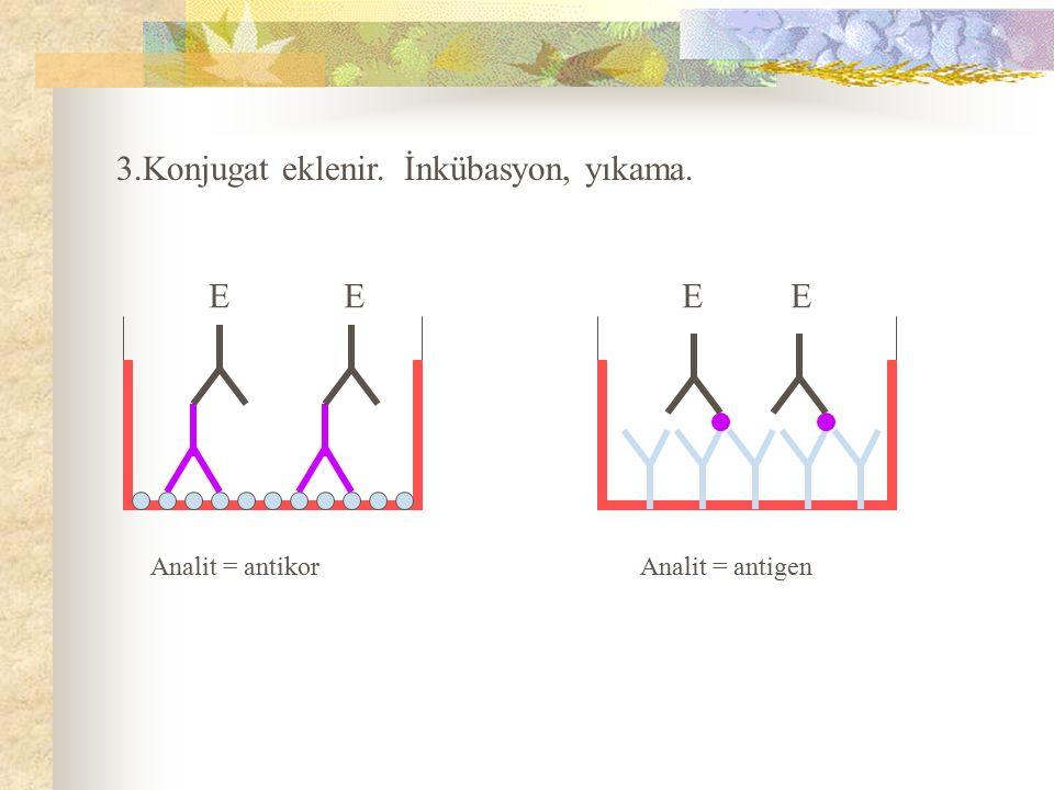 3.Konjugat eklenir. İnkübasyon, yıkama. Analit = antikor Analit = antigen E E