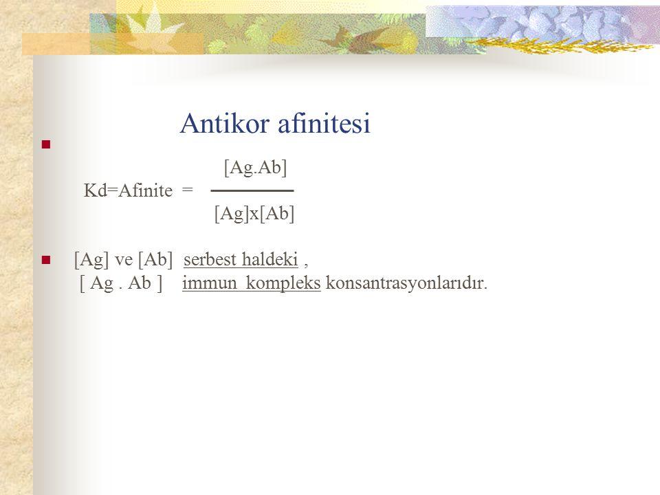 Antikor afinitesi [Ag.Ab] Kd=Afinite = [Ag]x[Ab] [Ag] ve [Ab] serbest haldeki, [ Ag. Ab ] immun kompleks konsantrasyonlarıdır.