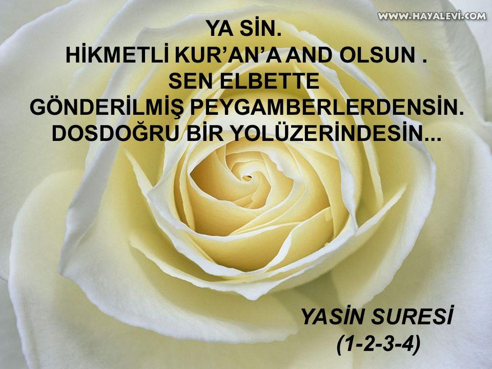 www.islamcenneti.org YA SİN. HİKMETLİ KUR'AN'A AND OLSUN.