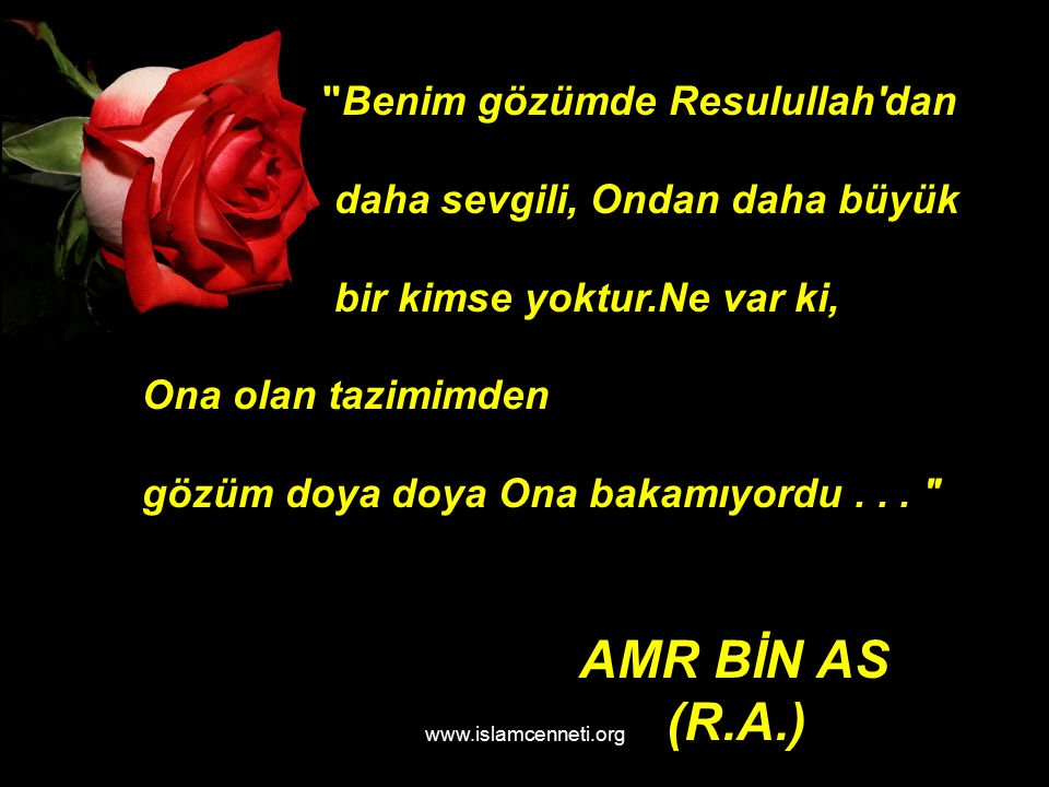 www.islamcenneti.org AMR BİN AS (R.A.) Benim gözümde Resulullah dan daha sevgili, Ondan daha büyük bir kimse yoktur.Ne var ki, Ona olan tazimimden gözüm doya doya Ona bakamıyordu...