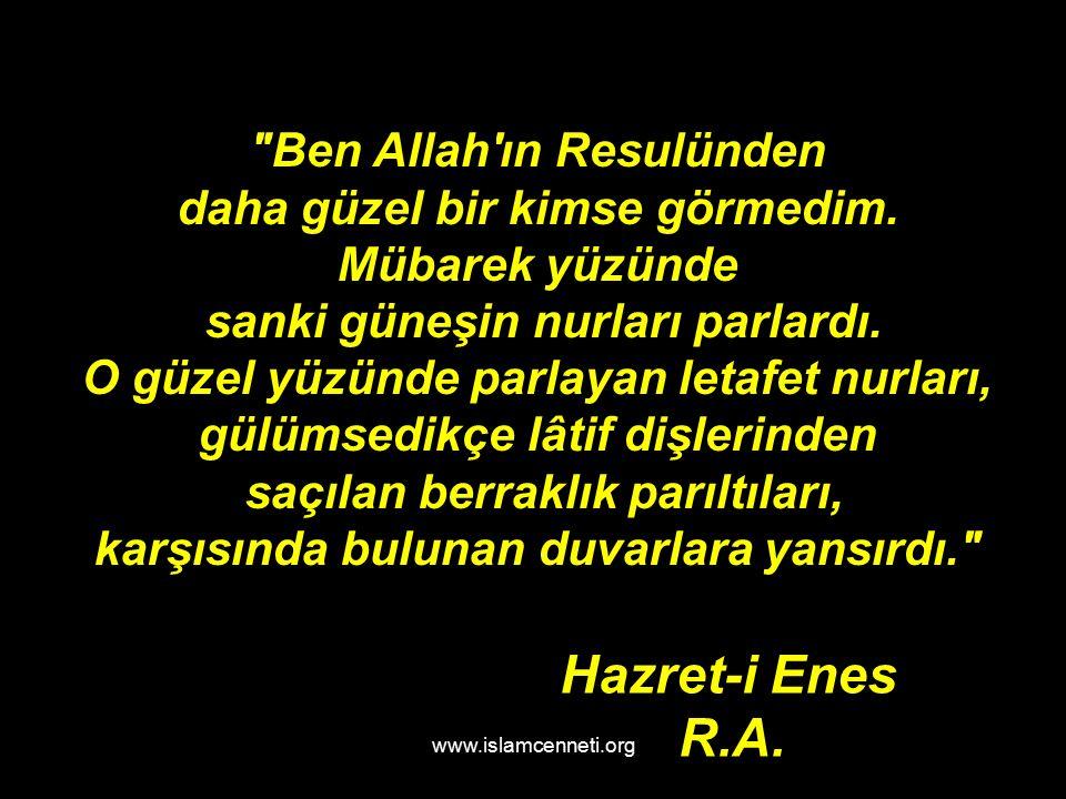 www.islamcenneti.org Ben Allah ın Resulünden daha güzel bir kimse görmedim.