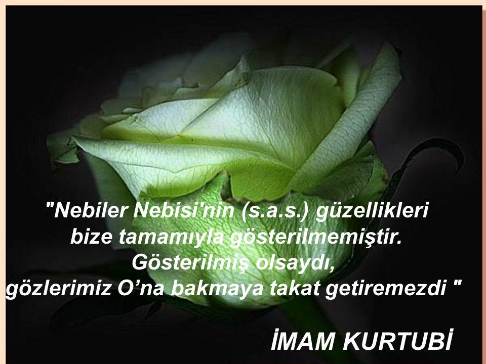 www.islamcenneti.org Nebiler Nebisi nin (s.a.s.) güzellikleri bize tamamıyla gösterilmemiştir.