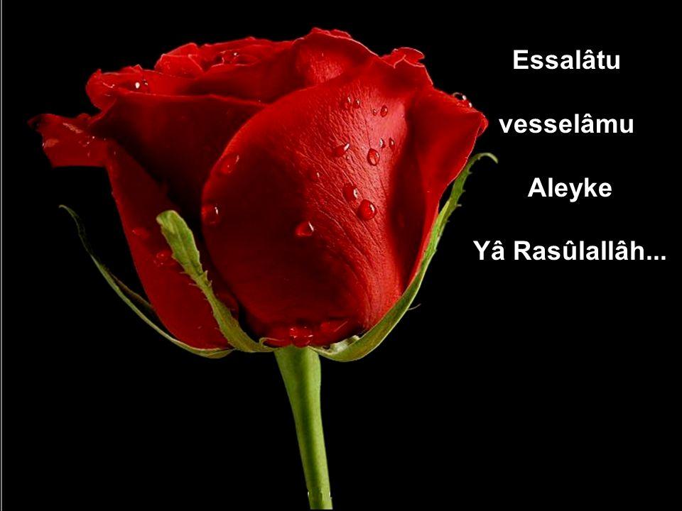www.islamcenneti.org Essalâtu vesselâmu Aleyke Yâ Rasûlallâh...