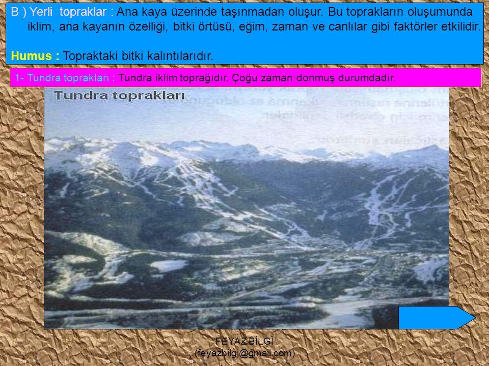 FEYAZ BİLGİ (feyazbilgi@gmail.com) Buzullar – Moren ( buzultaş ) topraklar moren