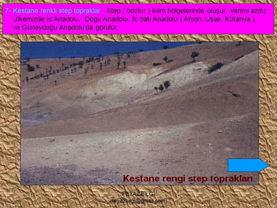 FEYAZ BİLGİ (feyazbilgi@gmail.com) 6- Çernozyum ( kara ) topraklar : Orta kuşağın yarı nemli step ( bozkır ) bölgelerinde oluşur. Dünyanın tarım için