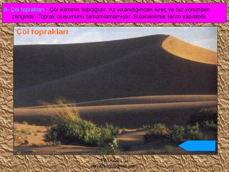 FEYAZ BİLGİ (feyazbilgi@gmail.com) 7- Kestane renkli step topraklar : Step ( bozkır ) iklim bölgelerinde oluşur. Verimi azdır. Ülkemizde İç Anadolu, D