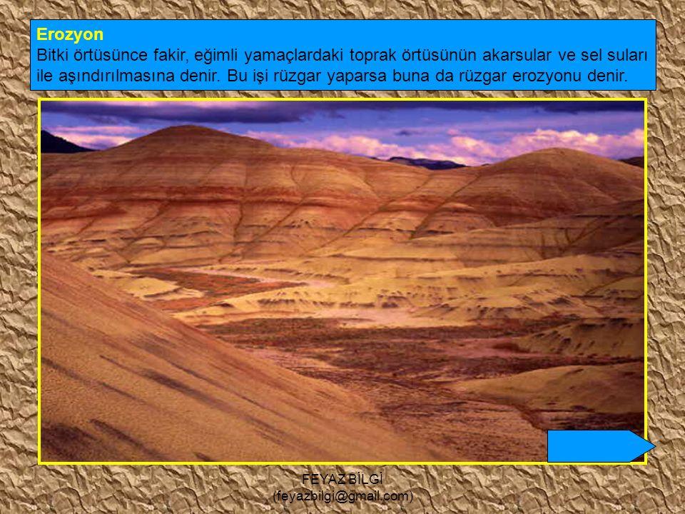 FEYAZ BİLGİ (feyazbilgi@gmail.com) 8- Çöl toprakları : Çöl ikliminin toprağıdır. Az yıkandığından kireç ve tuz yönünden zengindir. Toprak oluşumunu ta