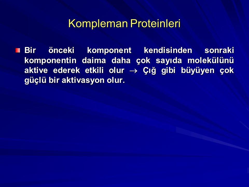 Kompleman Proteinleri Kompleman sistemindeki bu protein yapısındaki komponentler gerçekte proenzim gibi düşünülebilir. Kompleman sisteminin ilk kompon
