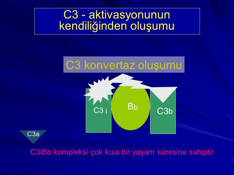 Alternatif Yol Bileşenleri C3 B D P