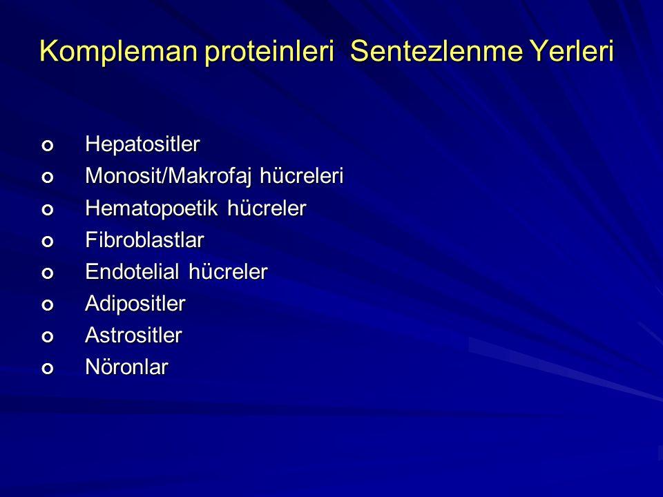Kompleman proteinleri Sentezlenme Yerleri Hepatositler Monosit/Makrofaj hücreleri Hematopoetik hücreler Fibroblastlar Endotelial hücreler AdipositlerAstrositlerNöronlar