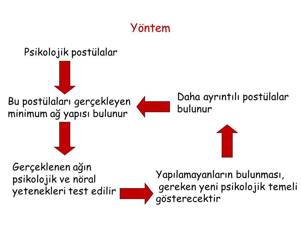 Yöntem Psikolojik postülalar Bu postülaları gerçekleyen minimum ağ yapısı bulunur Gerçeklenen ağın psikolojik ve nöral yetenekleri test edilir Yapılamayanların bulunması, gereken yeni psikolojik temeli gösterecektir Daha ayrıntılı postülalar bulunur