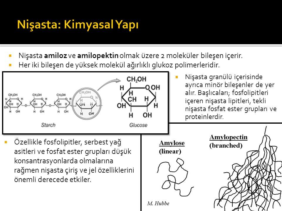  Nişasta amiloz ve amilopektin olmak üzere 2 moleküler bileşen içerir.  Her iki bileşen de yüksek molekül ağırlıklı glukoz polimerleridir.  Özellik