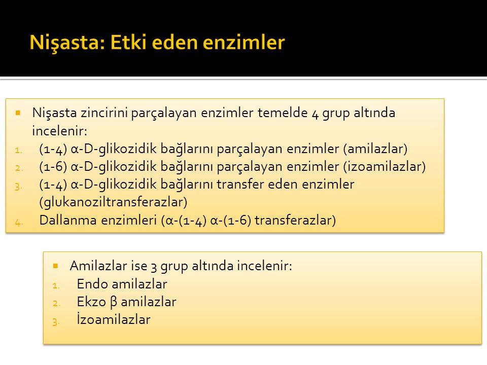 Nişasta zincirini parçalayan enzimler temelde 4 grup altında incelenir: 1. (1-4) α-D-glikozidik bağlarını parçalayan enzimler (amilazlar) 2. (1-6) α