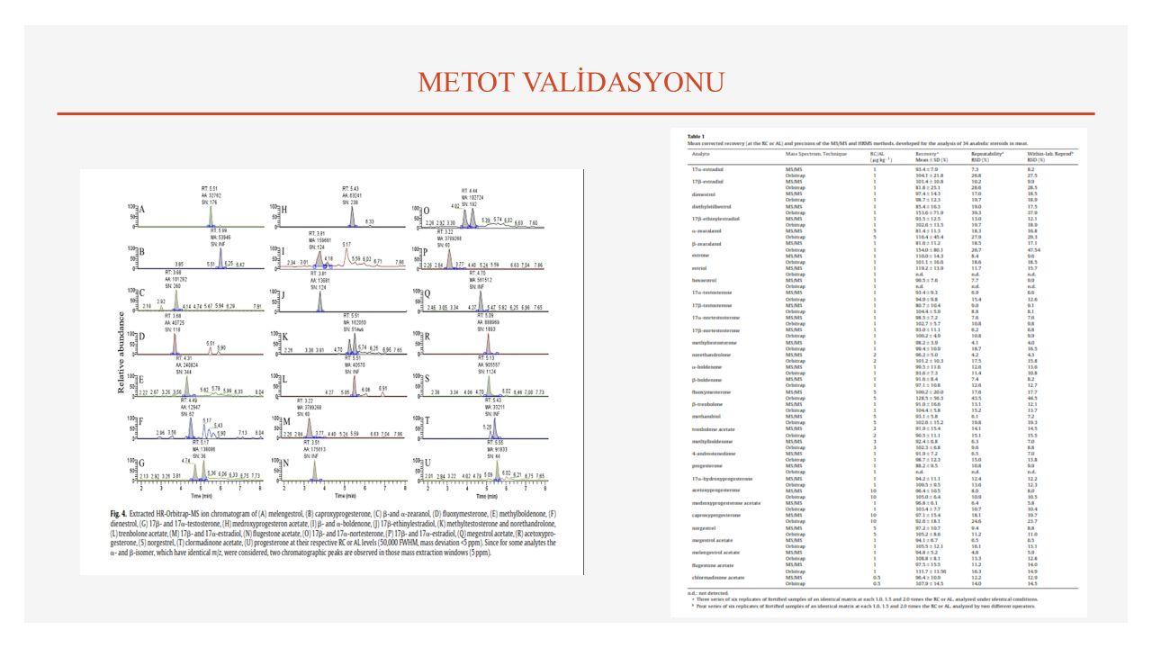 METOT VALİDASYONU