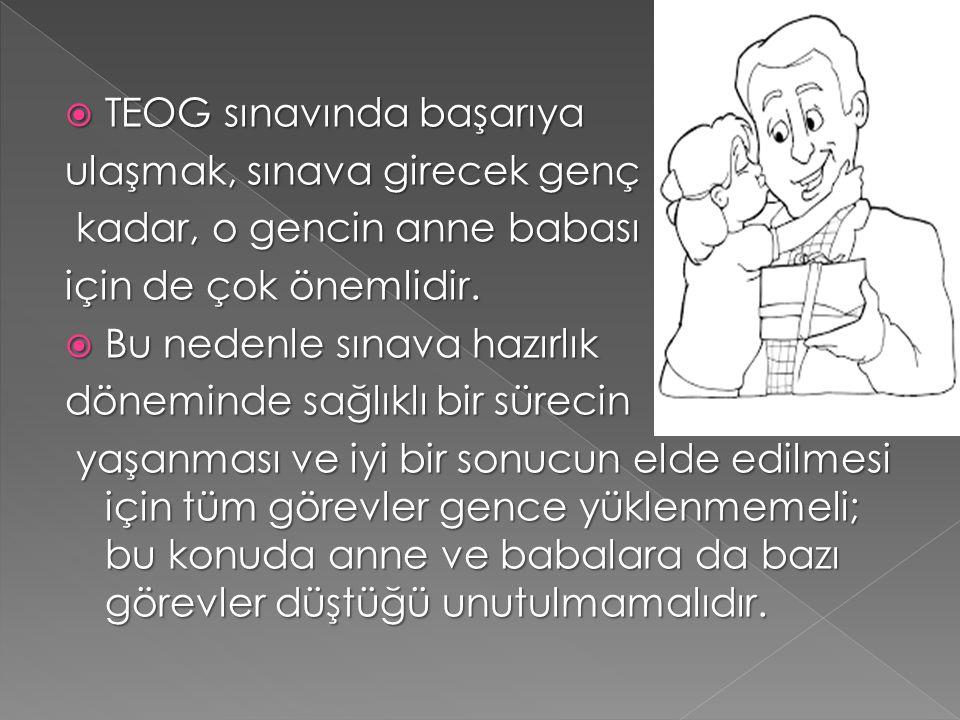  TEOG sınavında başarıya ulaşmak, sınava girecek genç kadar, o gencin anne babası kadar, o gencin anne babası için de çok önemlidir.  Bu nedenle sın