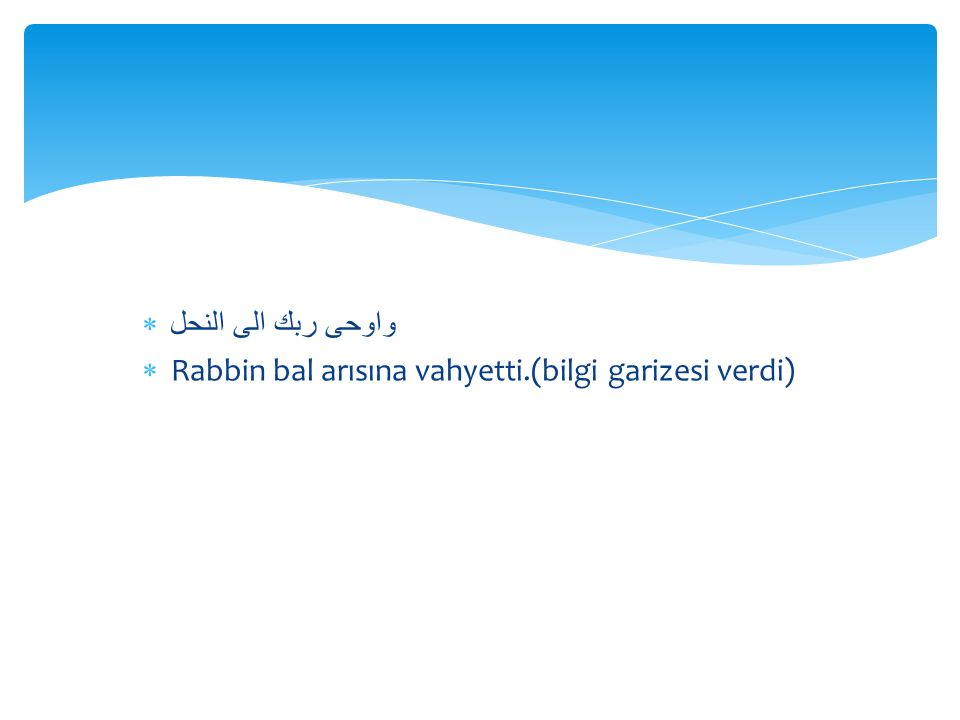 واوحى ربك الى النحل  Rabbin bal arısına vahyetti.(bilgi garizesi verdi)