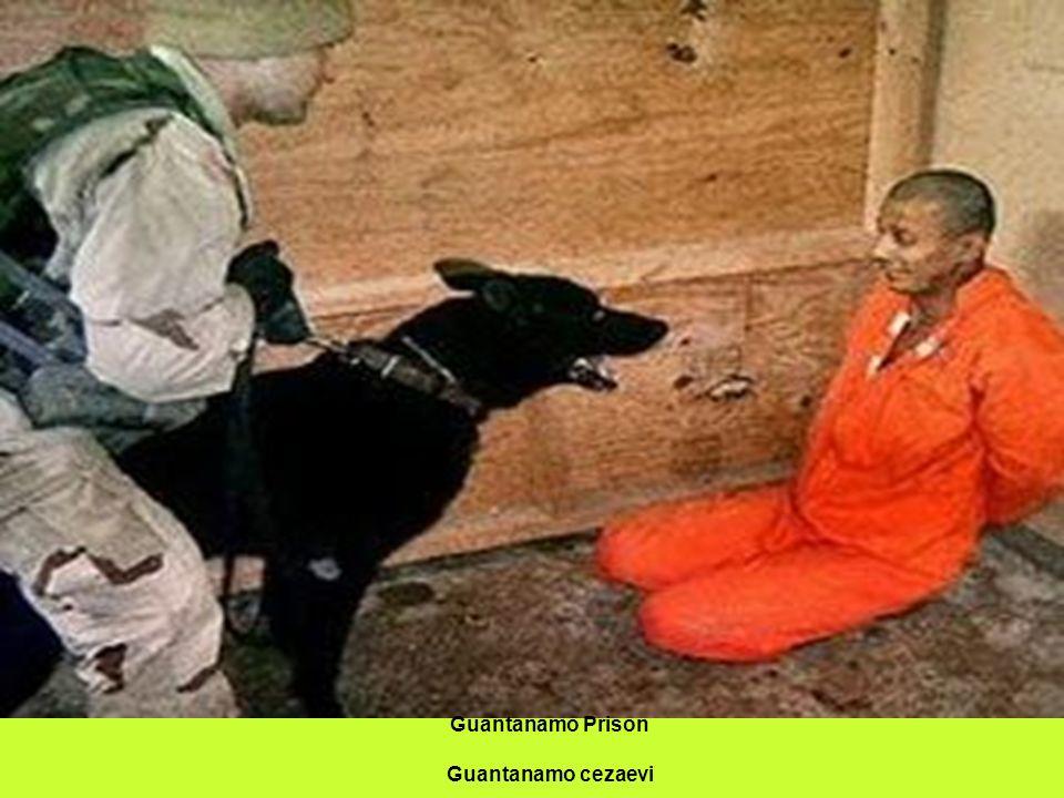 Guantanamo Prison Guantanamo cezaevi