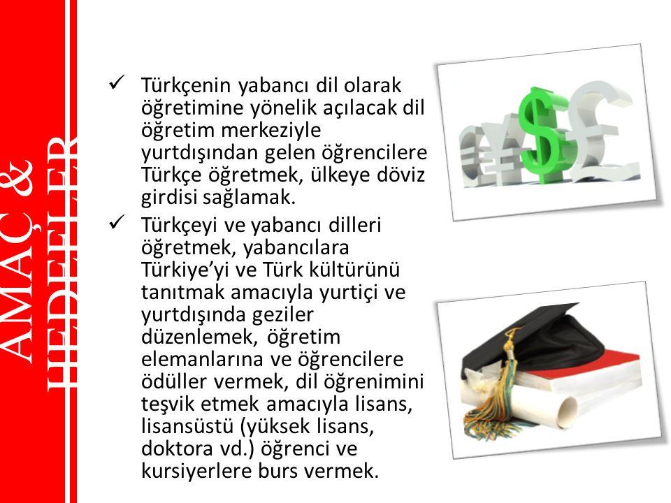 Türkçenin yabancı dil olarak öğretimine yönelik açılacak dil öğretim merkeziyle yurtdışından gelen öğrencilere Türkçe öğretmek, ülkeye döviz girdisi s