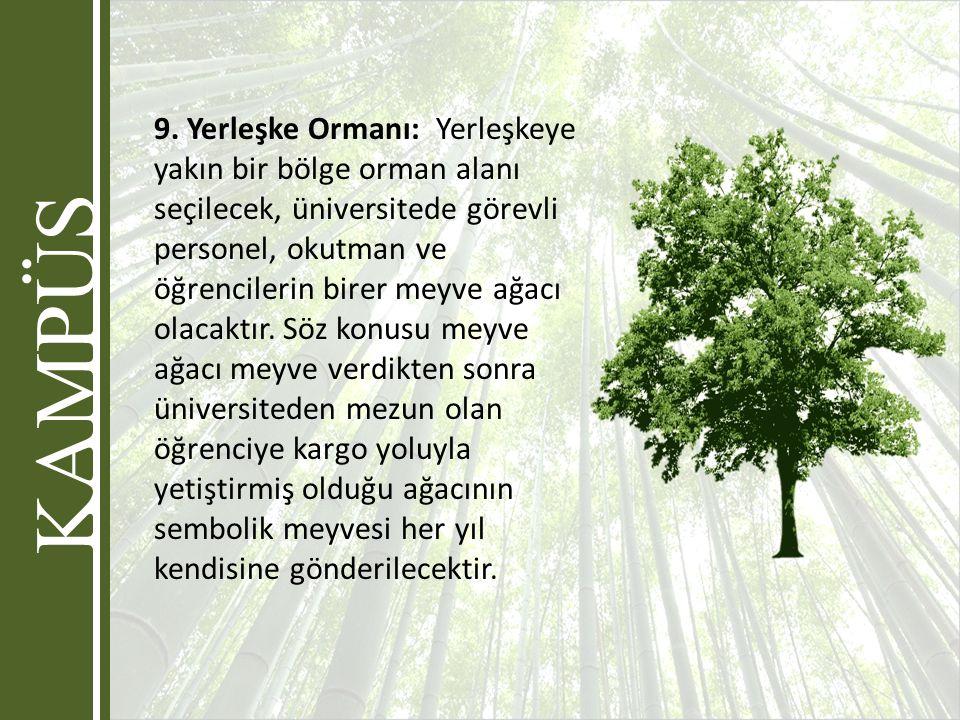 9. Yerleşke Ormanı: Yerleşkeye yakın bir bölge orman alanı seçilecek, üniversitede görevli personel, okutman ve öğrencilerin birer meyve ağacı olacakt