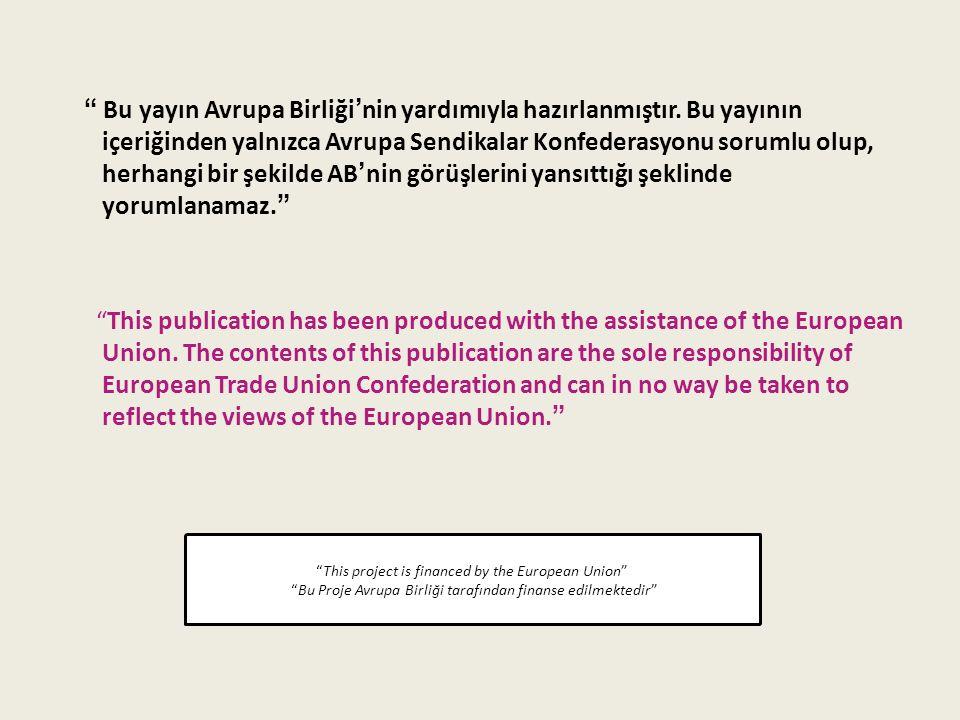 Bu yayın Avrupa Birliği'nin yardımıyla hazırlanmıştır.