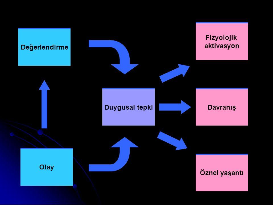 Değerlendirme Olay Duygusal tepki Fizyolojik aktivasyon Davranış Öznel yaşantı