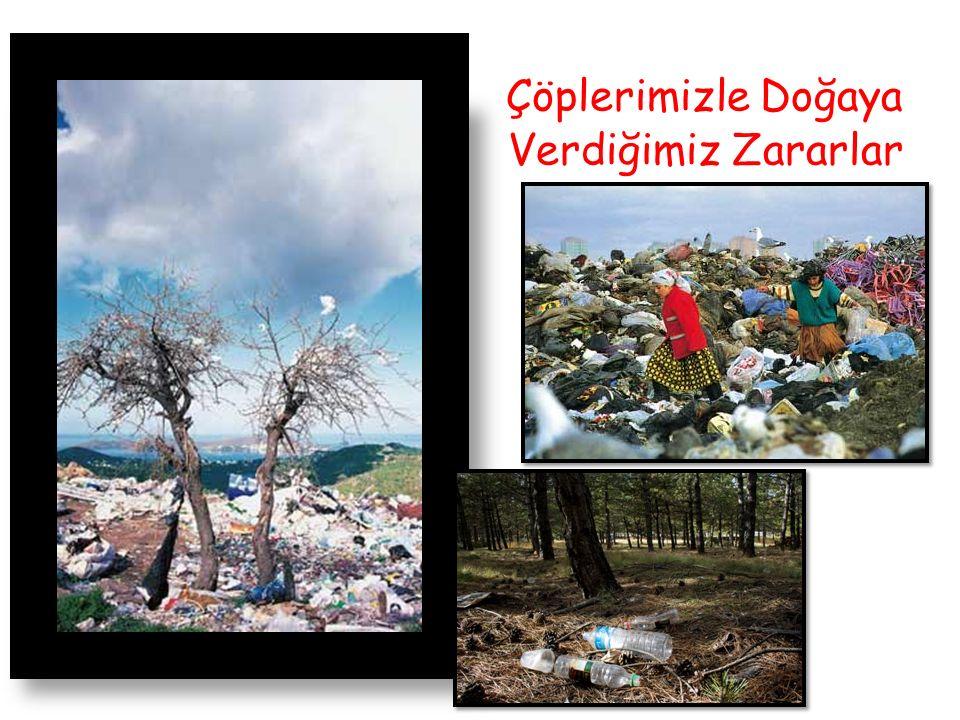 Çöplerimizle Doğaya Verdiğimiz Zararlar