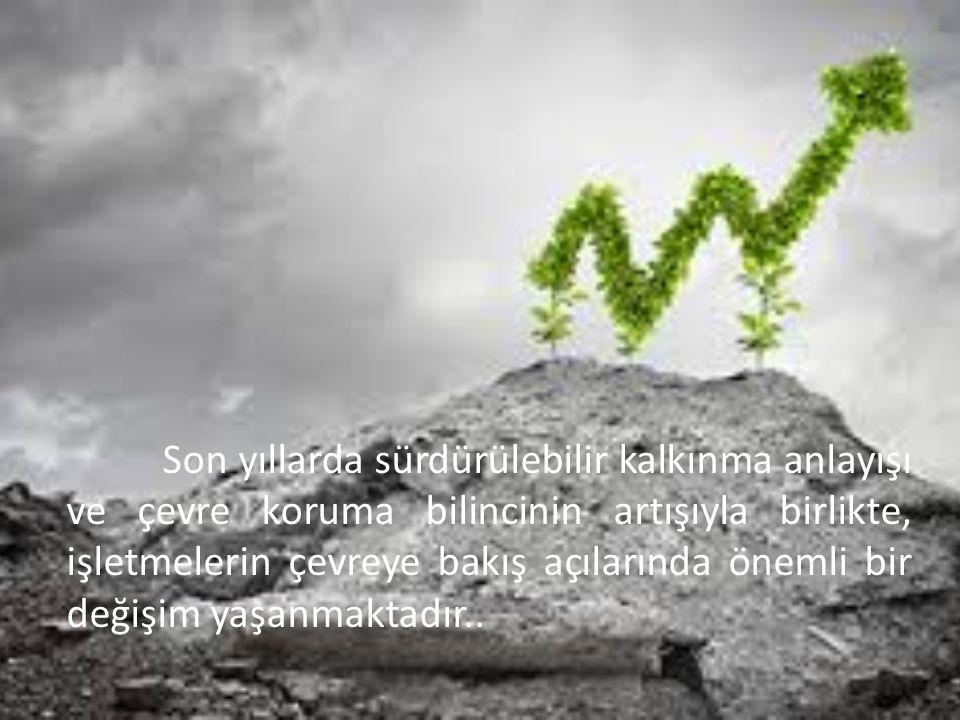 Sonuç olarak, yeşil işletmecilik ekolojik dengeye en az zarar verecek, hatta bu zararı tamamen ortadan kaldıracak alternatifler üzerine odaklanmak, tedarikçilerini bu zihniyetle seçmek, yeşil ürün veya hizmeti bir pazarlama stratejisi olmaktan öteye götürmek ve yeşil yaşam kalitesinin yaratıcısı olmak demektir.