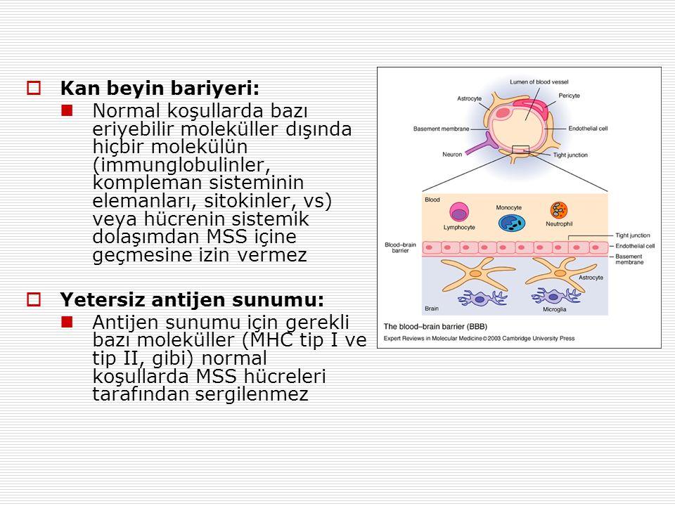  Kan beyin bariyeri: Normal koşullarda bazı eriyebilir moleküller dışında hiçbir molekülün (immunglobulinler, kompleman sisteminin elemanları, sitokinler, vs) veya hücrenin sistemik dolaşımdan MSS içine geçmesine izin vermez  Yetersiz antijen sunumu: Antijen sunumu için gerekli bazı moleküller (MHC tip I ve tip II, gibi) normal koşullarda MSS hücreleri tarafından sergilenmez