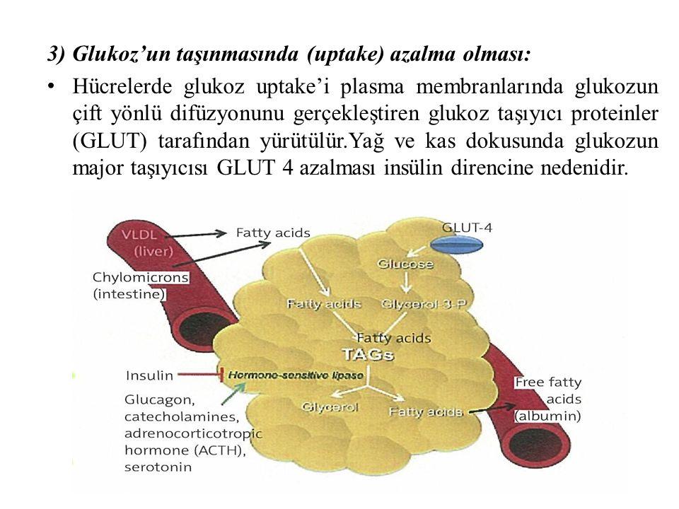 3) Glukoz'un taşınmasında (uptake) azalma olması: Hücrelerde glukoz uptake'i plasma membranlarında glukozun çift yönlü difüzyonunu gerçekleştiren glukoz taşıyıcı proteinler (GLUT) tarafından yürütülür.Yağ ve kas dokusunda glukozun major taşıyıcısı GLUT 4 azalması insülin direncine nedenidir.