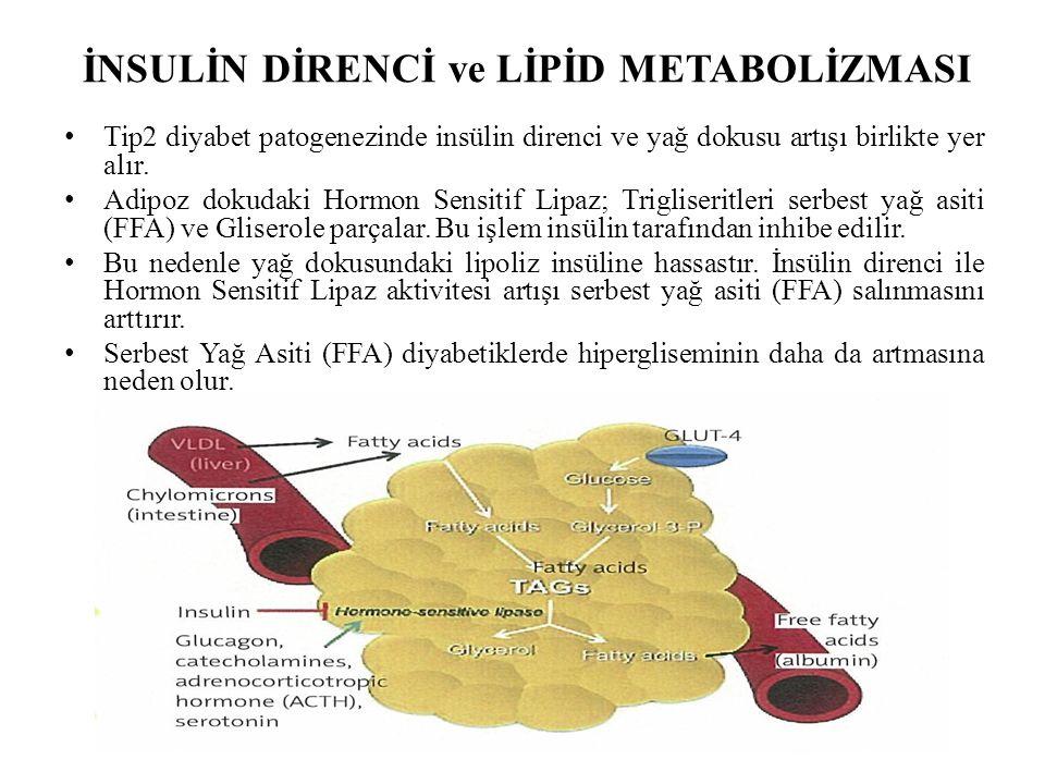 İNSULİN DİRENCİ ve LİPİD METABOLİZMASI Tip2 diyabet patogenezinde insülin direnci ve yağ dokusu artışı birlikte yer alır.