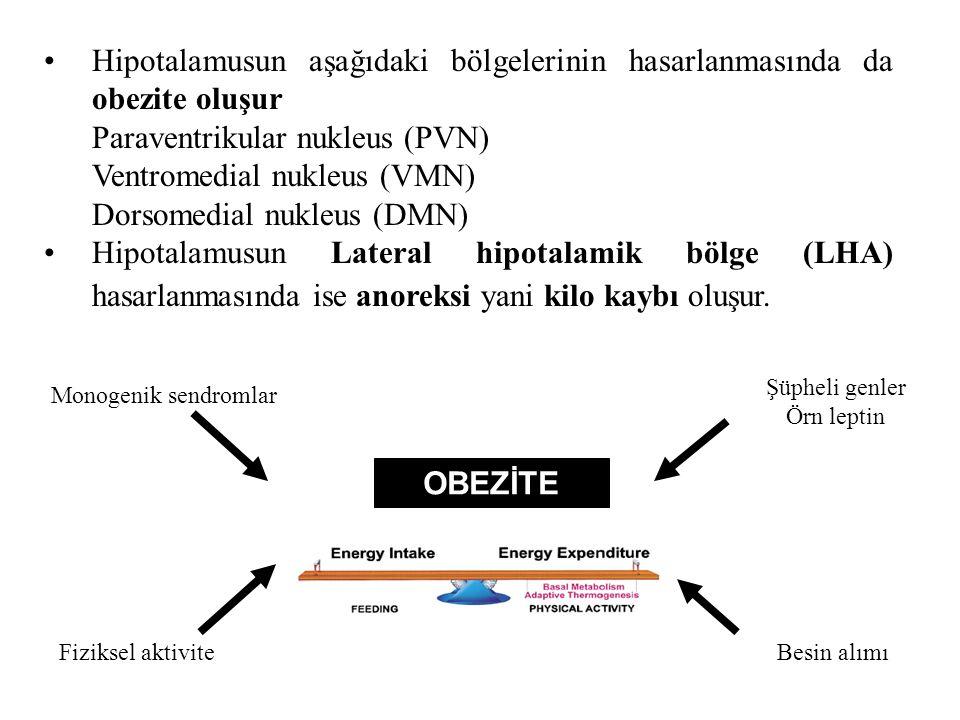 Hipotalamusun aşağıdaki bölgelerinin hasarlanmasında da obezite oluşur Paraventrikular nukleus (PVN) Ventromedial nukleus (VMN) Dorsomedial nukleus (DMN) Hipotalamusun Lateral hipotalamik bölge (LHA) hasarlanmasında ise anoreksi yani kilo kaybı oluşur.