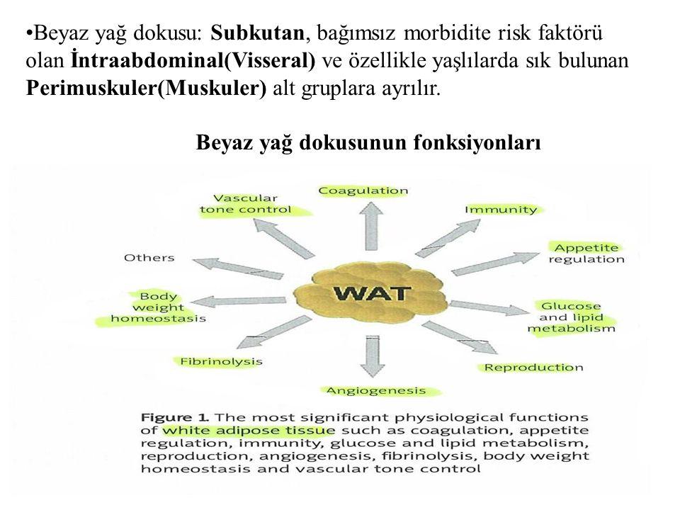 INSULIN DİRENCİ MEKANİZMALARI PRERESEPTORYAL INSULIN DİRENCİ 1)Anormal beta hücre sekresyonu: Genetik mutasyonlar ile defektif insülin oluşur.Proinsülindeki anomali ile proinsulin'in insuline dönüşümü yetersizdir.
