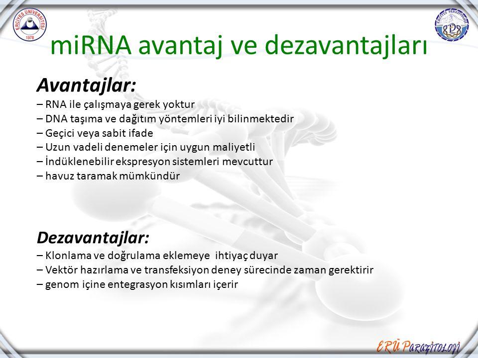 miRNA avantaj ve dezavantajları Avantajlar: – RNA ile çalışmaya gerek yoktur – DNA taşıma ve dağıtım yöntemleri iyi bilinmektedir – Geçici veya sabit