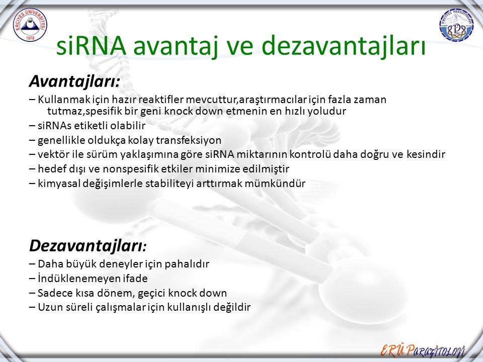siRNA avantaj ve dezavantajları Avantajları: – Kullanmak için hazır reaktifler mevcuttur,araştırmacılar için fazla zaman tutmaz,spesifik bir geni knoc