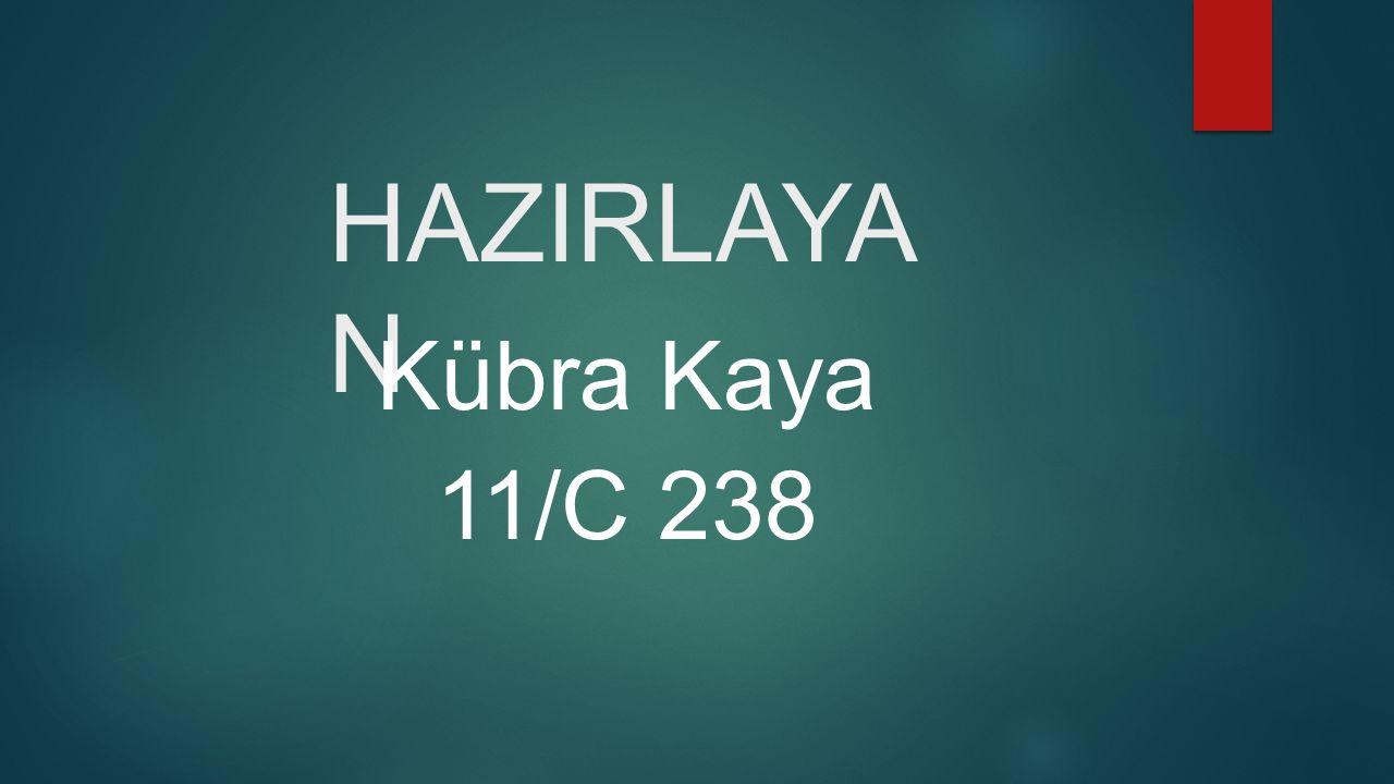 HAZIRLAYA N Kübra Kaya 11/C 238