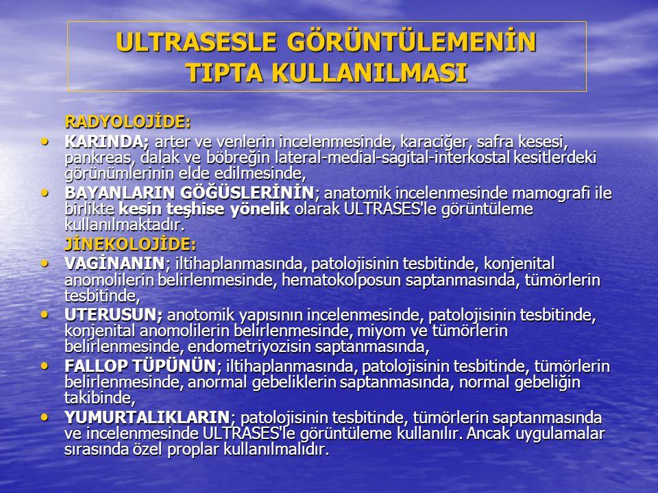 ULTRASESİN cinsiyet tayininde kullanımı : 11 haftalık fetus (erkek) (1997), Uyluk kemikleri (T), Scrotum (S) ve penis