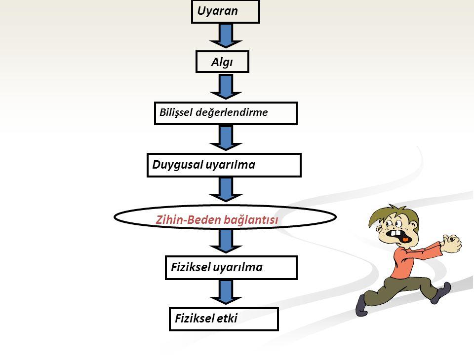 Uyaran Algı Bilişsel değerlendirme Duygusal uyarılma Zihin-Beden bağlantısı Fiziksel uyarılma Fiziksel etki