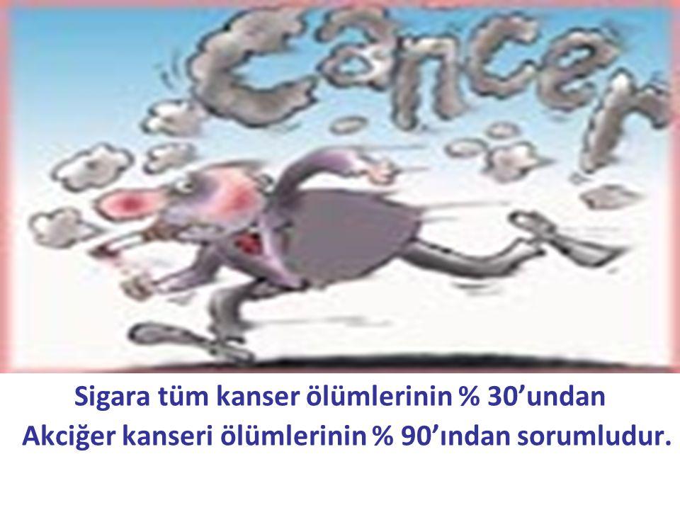 Sigara tüm kanser ölümlerinin % 30'undan Akciğer kanseri ölümlerinin % 90'ından sorumludur.