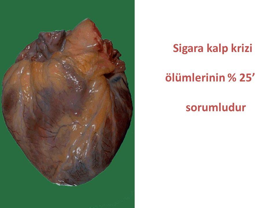 Sigara kalp krizi ölümlerinin % 25' sorumludur