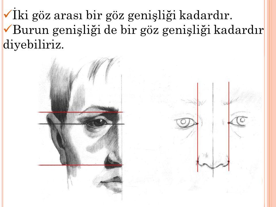 İki göz arası bir göz genişliği kadardır. Burun genişliği de bir göz genişliği kadardır diyebiliriz.