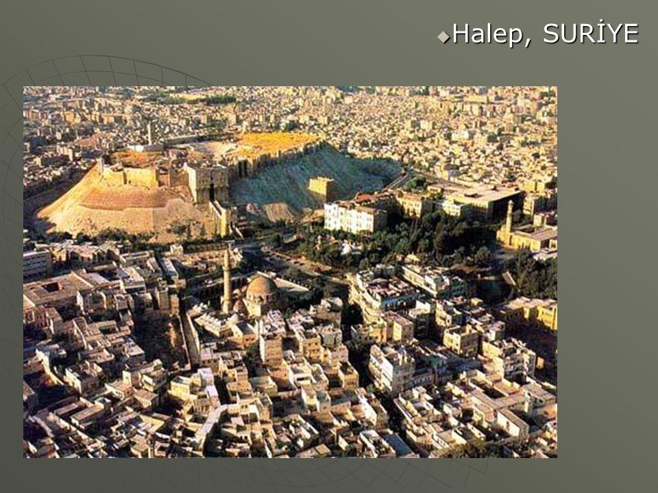  Halep, SURİYE