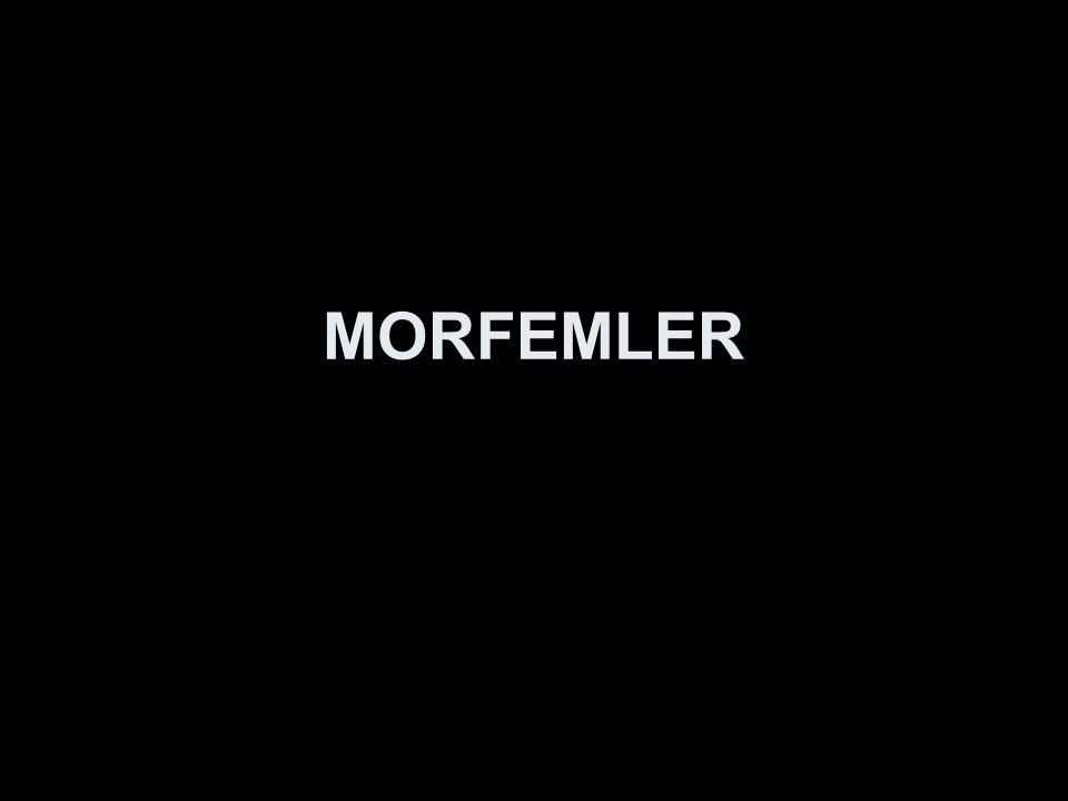 MORFEMLER