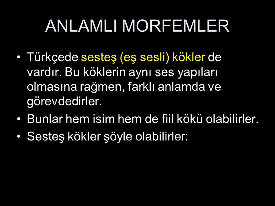 ANLAMLI MORFEMLER Türkçede sesteş (eş sesli) kökler de vardır.