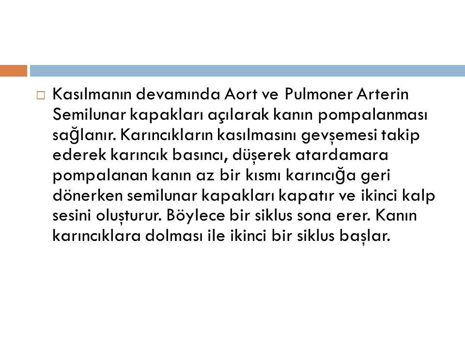  Kasılmanın devamında Aort ve Pulmoner Arterin Semilunar kapakları açılarak kanın pompalanması sa ğ lanır.